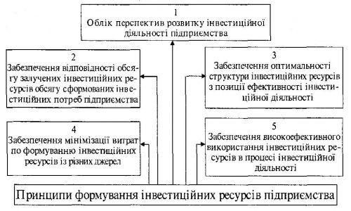Основні принципи формування інвестиційних ресурсів підприємства