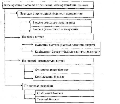 Класифікація основних видів бюджетів